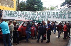 Denuncia penal al director del INYM por incumplimiento del último acuerdo yerbatero
