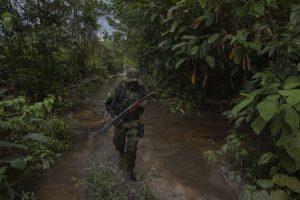 Un integrante del Grupo de Inspección Especializado, una unidad de Ibama, la agencia de protección ambiental brasileña, busca rastros de actividad de tala ilegal en Tierra Indígena Alto Turiaçu.