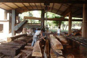Madereros de Concordia en crisis amenazan con salir a cortar rutas
