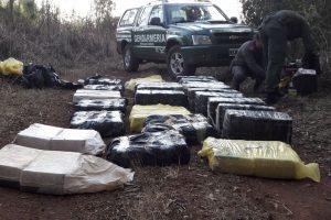 Encuentran 690 kilos de marihuana ocultos entre malezas en Campo Grande