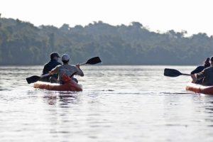 La experiencia de la selva misionera en la Reserva Natural Yacutinga