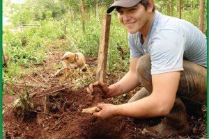 Más de 20 mil árboles nativos para reforestar en Andresito