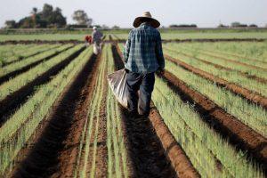 Los preparativos en México ante el posible colapso del TLCAN