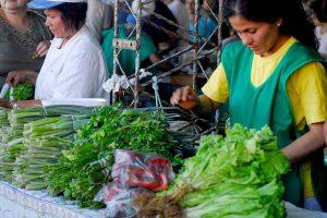 Agricultura Familiar realizará un encuentro de mujeres rurales