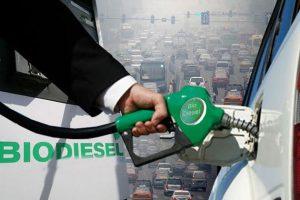 Biodiesel, gasoil y las posibilidades argentinas