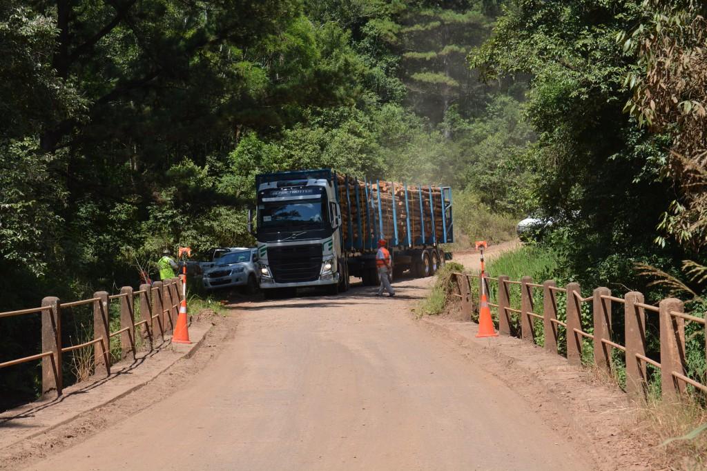 ¿Camiones bitrenes si o no? Economis viajó a Piray y te cuenta cómo fue la primera prueba piloto