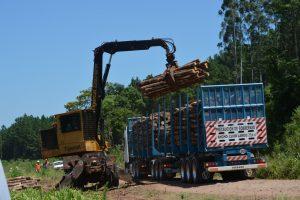 Avanzan con la implementación de los bitrenes forestales en Misiones