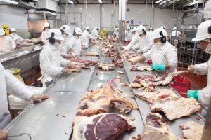 Desde marzo será obligatorio el Controlador Electrónico de Faena para establecimientos bovinos