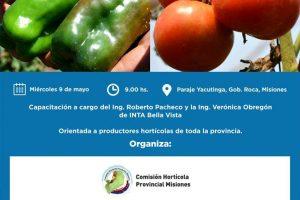 Gobernador Roca: capacitarán a productores en cultivo de tomate y pimientos