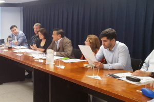 Escucharán a productores en la Legislatura  para mejorar representación en el INYM