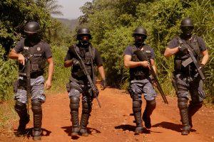 Megaoperativo Coatí: incautaron droga y contrabando por 10 millones de pesos en varios procedimientos