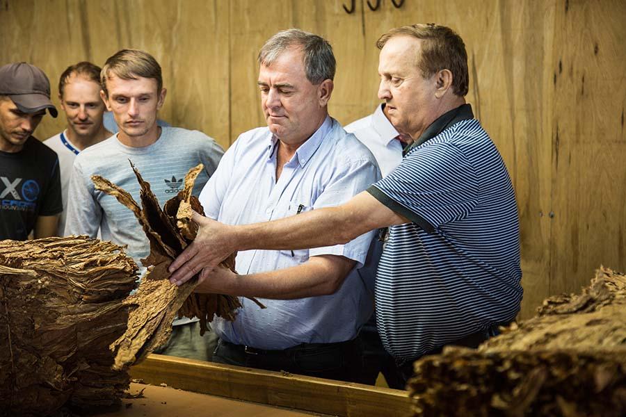Superávit, jugo de exportación y tabaco Premium, la transformación de la Cooperativa Tabacalera de Misiones