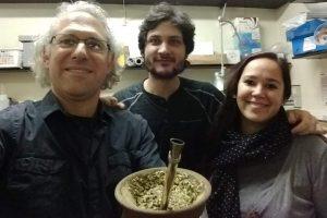 Una nueva investigación del INYM consolida la yerba mate como preventiva de Parkinson