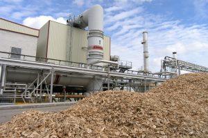 Por la corrida cambiaria, se frenó una inversión de u$s 7 millones para producir energía de biomasa en Cerro Azul