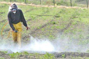 Elaboran 12 principios para el uso de agroquímicos