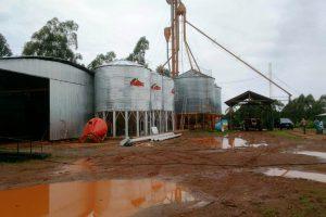 Agroindustria fortalece la mejora en la producción de alimento balanceado en el norte de Misiones