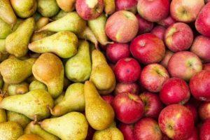 Acuerdo entre Argentina y Brasil para retomar el comercio de peras y manzanas