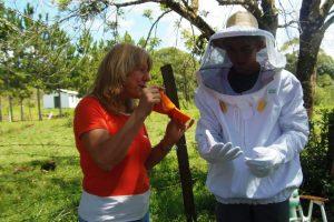 La apicultura convoca a mujeres y jóvenes en la zona de Yaboty