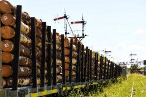 Madera con destino a China viajó por tren de Corrientes a Entre Ríos