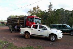 Ecología y Gendarmería decomisan un camión y un tractor en infracción a la Ley de Bosques