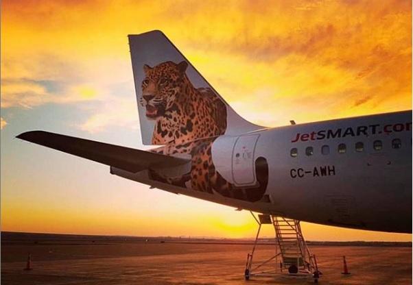 JetSmart ploteó con un yaguareté a sus aviones antes de volar a Iguazú