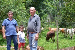 En Andresito, la yerba mate está bien custodiada