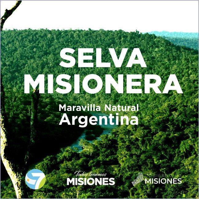 La Selva Misionera es oficialmente una de las Siete Maravillas Naturales de la Argentina
