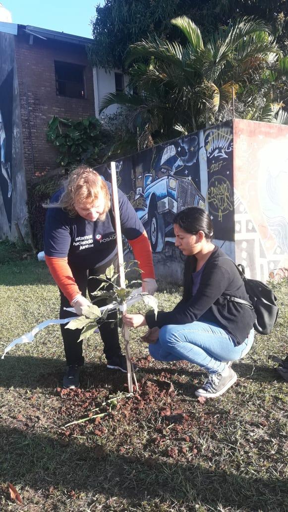"""Programa """"20.000 árboles"""": el municipio ya plantó más de 7000 ejemplares."""