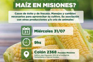 Pros y contras del maíz en Misiones: referentes del agro debaten mañana