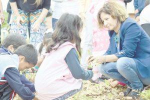 Huertas escolares, sustentabilidad a futuro