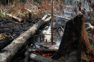 El incendio en el Amazonas fue calificado como una «catástrofe continental» con «impacto mundial»
