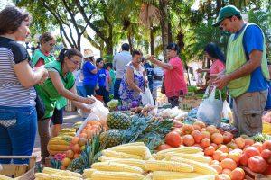 Para celebrar los 24 años de las Ferias Francas, productores comercializarán sus productos en Posadas