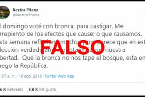 """Es falso el tuit de Pitana en donde señala que votó """"con bronca"""" contra el Gobierno"""