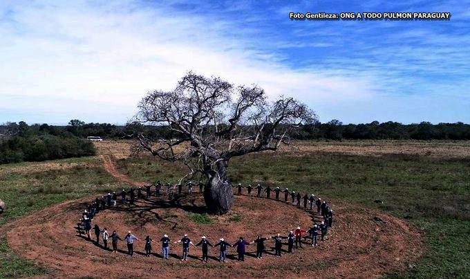 """Misiones recibe por primera vez a """"colosos de la tierra"""""""