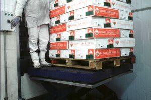 Las exportaciones de carnes bovinas totalizaron 25 mil toneladas peso res en enero de 2017