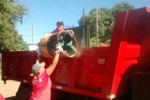 Dengue: La municipalidad de Posadas recolecta 30 camiones de cacharros por semana