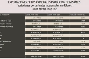 Crecieron 18 por ciento las exportaciones de Misiones en los primeros cinco meses