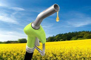 El salto del dólar pone a Pymes productoras de biodiésel contra las cuerdas