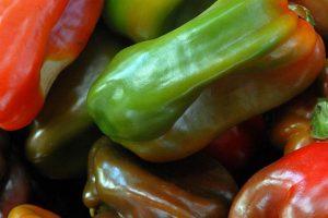 Agroindustria, Senasa y AFIP unifican documento para seguimiento fitosanitario y fiscal de productos vegetales