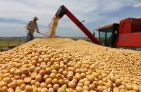 Dicen que el Gobierno subiría 3 puntos, al máximo de 33% las retenciones a la soja