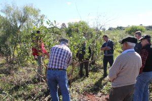 «Llevar el INYM a las chacras es una excelente iniciativa», afirmó el intendente de Garruchos