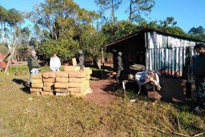 Incautan otras tres toneladas de marihuana en Misiones