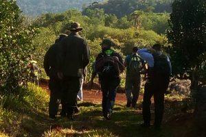 Cuatro detenidos en un operativo de Gendarmería y Ecología por desmontes ilegales