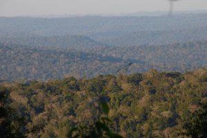 Se aprobó la designación de Misiones como Capital Nacional de la Biodiversidad
