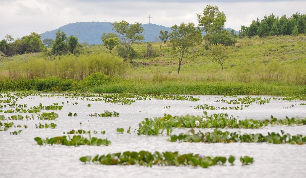 Campo San Juan: Misiones planteó demanda para frenar el traspaso a Parques Nacionales
