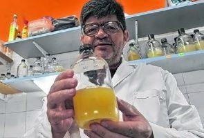 Presentarán en Misiones un probiótico que podría prolongar la vida