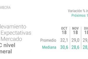 Inflación de 29 por ciento y un dólar a 48 pesos, las expectativas del mercado financiero