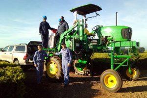 Lory avanza con la exportación de tecnología misionera para la cosecha del té