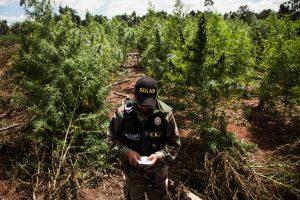 Paraguay aprueba el ingreso de armamento y personal militar de Estados Unidos