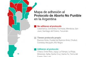 Misiones está en el lote de diez provincias con protocolo de aborto no punible